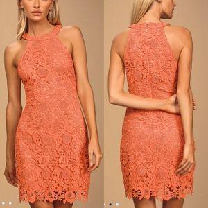 Lulus Love Poem Coral Orange Lace Dress Small